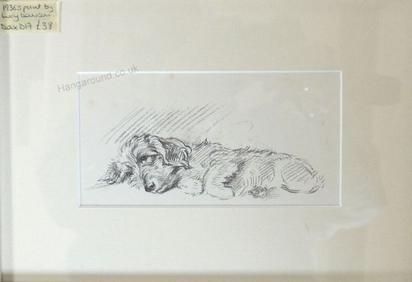 Wire haired Dachs lying on side -  Dax D17 -  1930's print by Lucy Dawson